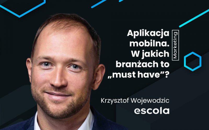 Wojewodzic_obrazek_wyrozniajacy
